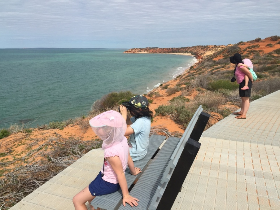on the board walk looking for sealife.