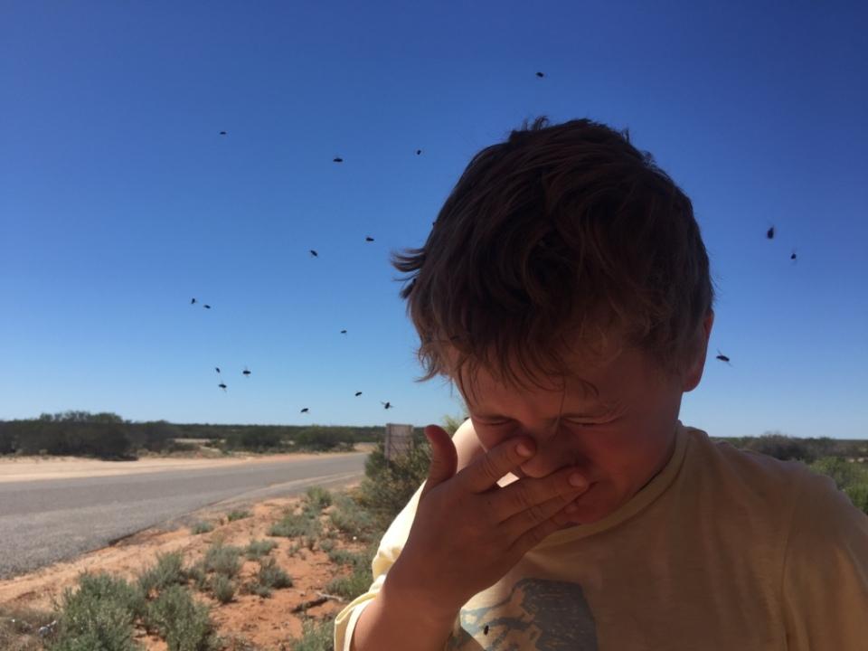 oh no flies in my eyes!