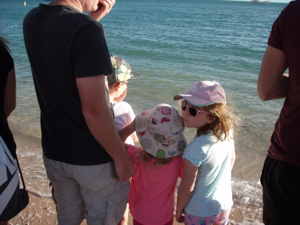 Looking at the dolphins in the beach line