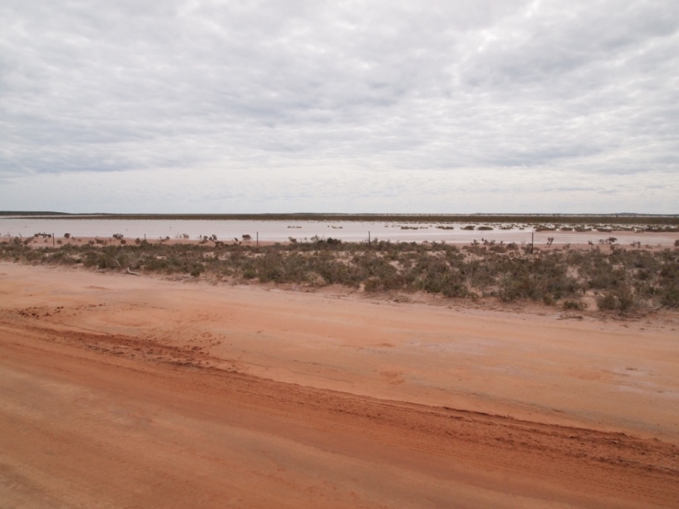 Mud flats next to the road out to the cape.
