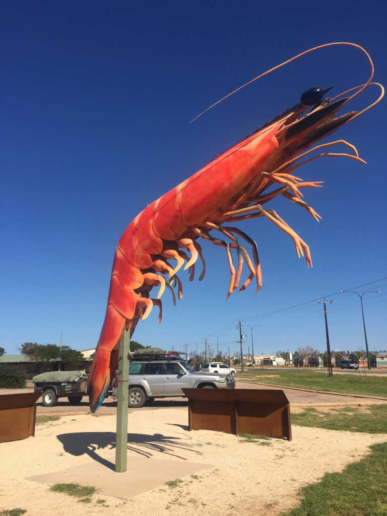 The BIG prawn!