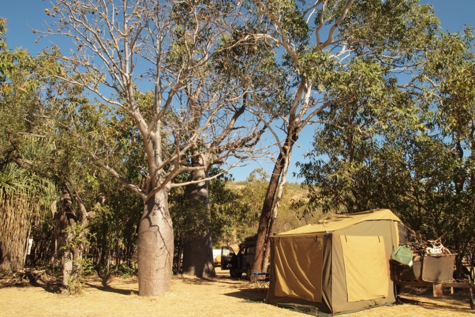 Camp at Silent Grove