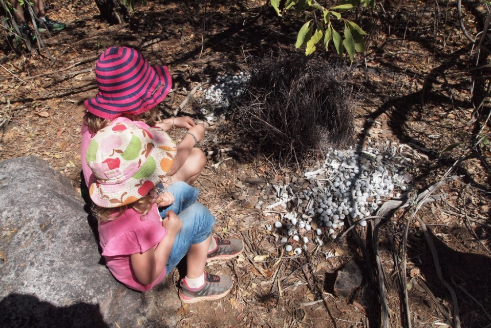 The girls investigate the bower bird nest