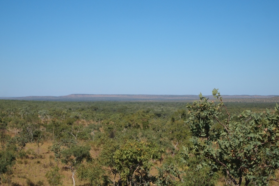 distant view of the Cockburn Ranges