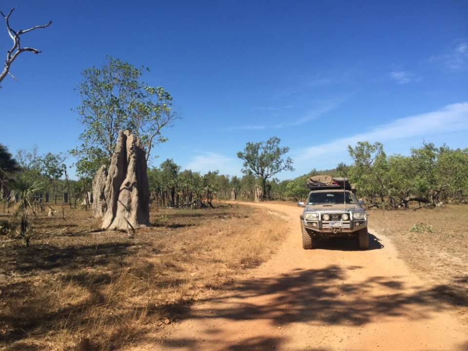 Southern Litchfield and the Termite mounds