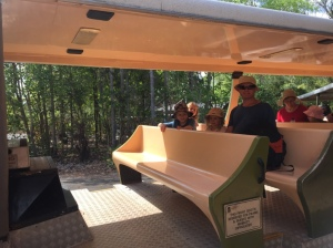 On the train at Territory Wild